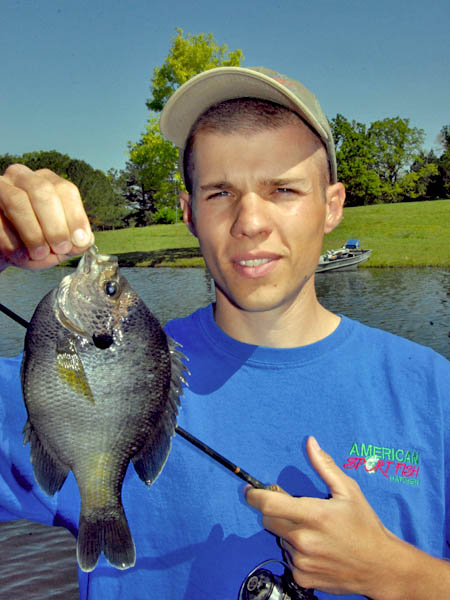 Tips for catching bigger bream this spring and summer for John s pass fishing