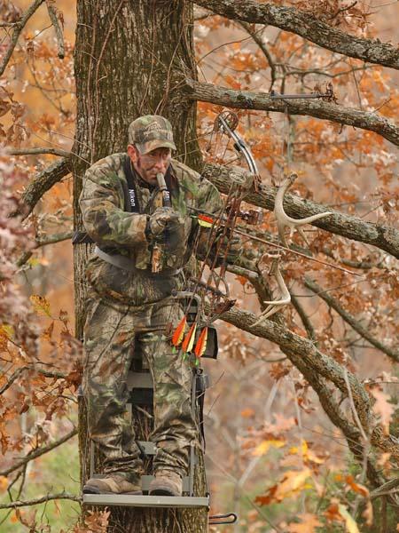 Advanced Tree Stand Strategies