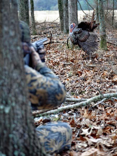 Alabama hunting laws and regulations total survival for Alabama fishing regulations