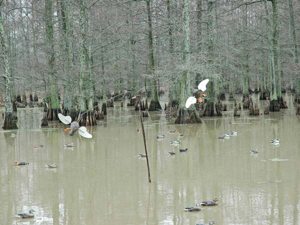 Tunica Mississippi Beaver Dam Duck Hunting And Bird Hunting At